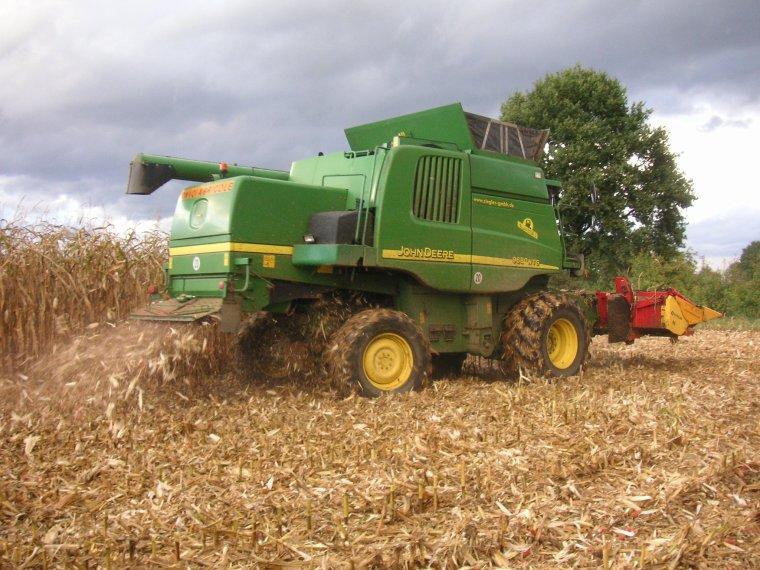 maïs grain 2012