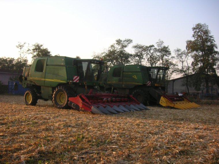 récolte du maïs avec la poussière en 2011