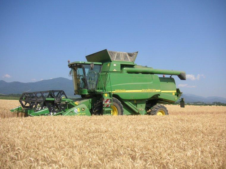 blé 2013