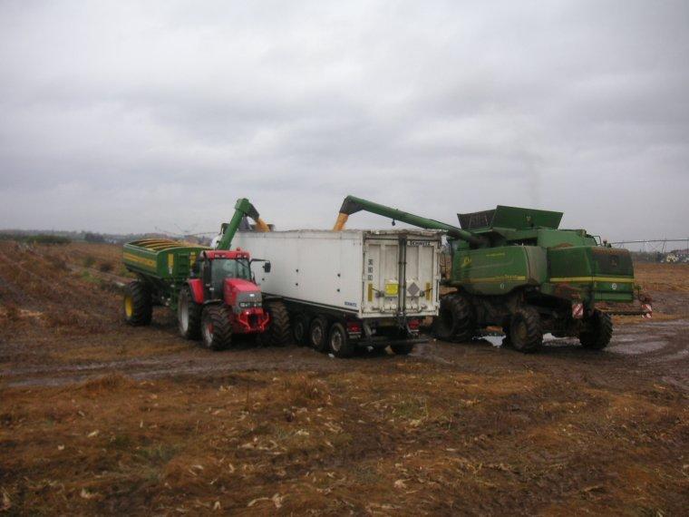derniers maïs 2013