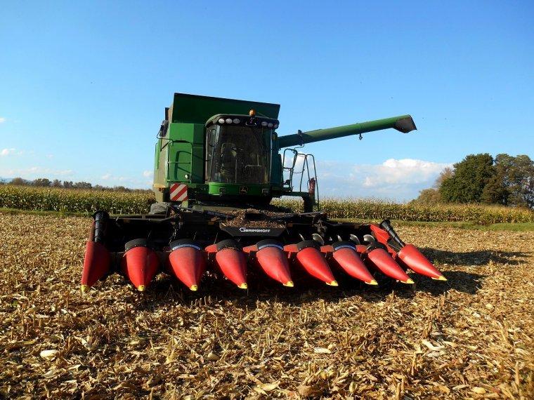 un peu de maïs avec la T 670