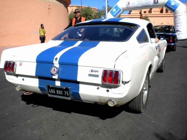 ford GT350 shelby