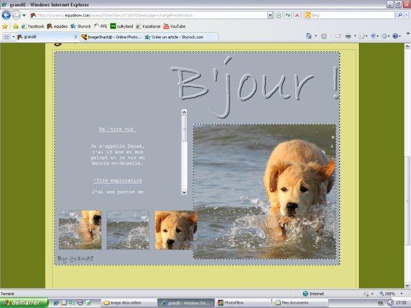 7# Labrador