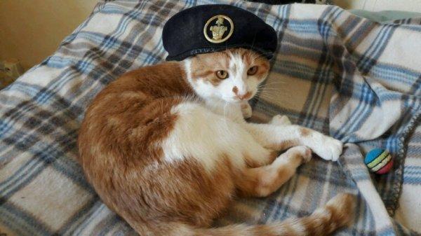 Coucou c moi caramel faut pas me chercher suis engagé dans l'armée