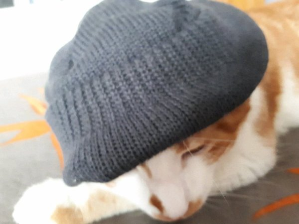 Coucou c moi caramel et mis le bonnet il fait froid