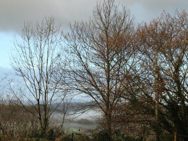 Au matin quand la brume recouvre le canal de Nantes à Brest