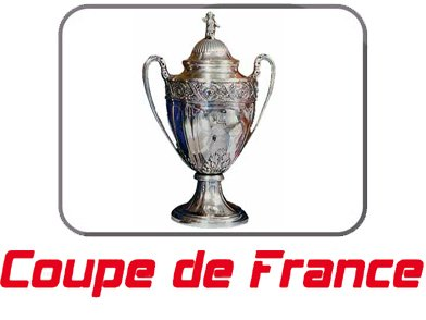 1/2 finale coupe de France : homme