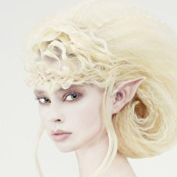 L'Elfe ...