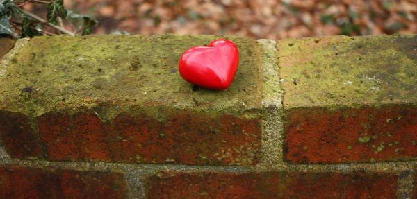 Il y a de ces amours que l'on perd parfois ...