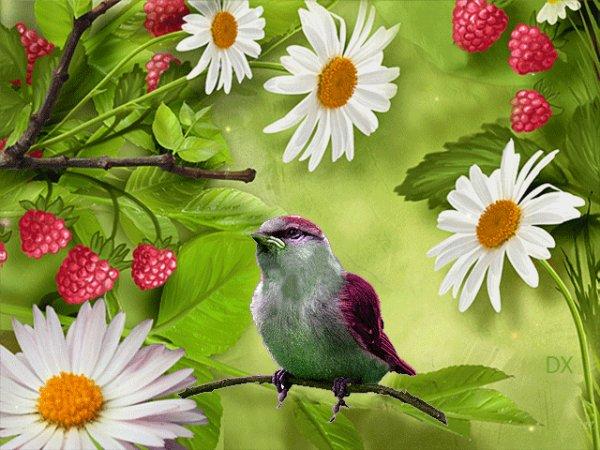 je  chante  les  beaux  jours   !!!