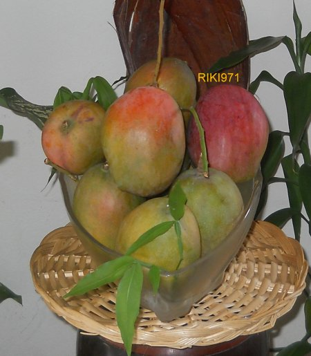 fruits de GUADELOUPE