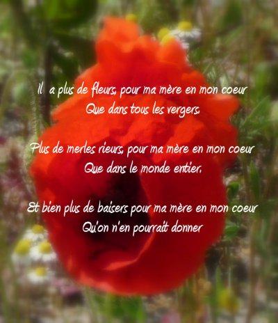 des fleurs pour maman - blog de knautie des champs