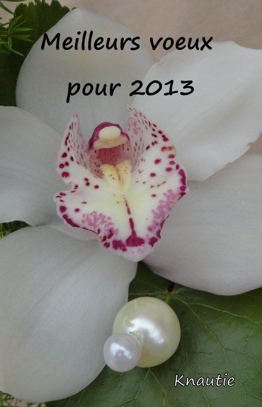 En route pour 2013 ...........