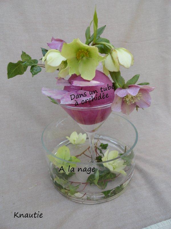 Pour garder les hellébores en bouquet