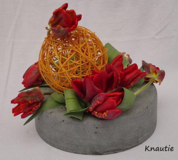 La ronde des tulipes
