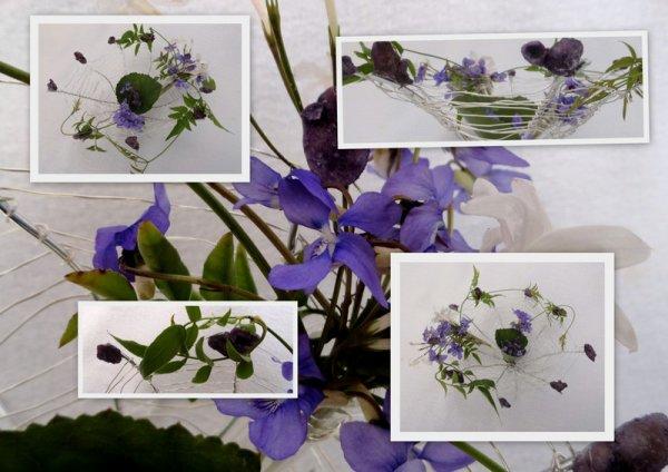 Parfum de violettes