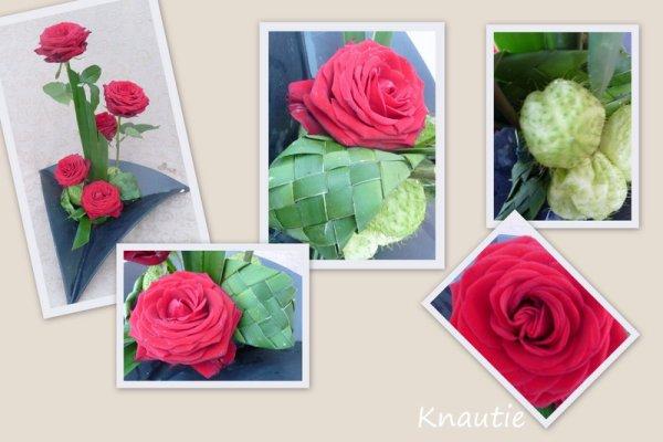 Roses et yuccca