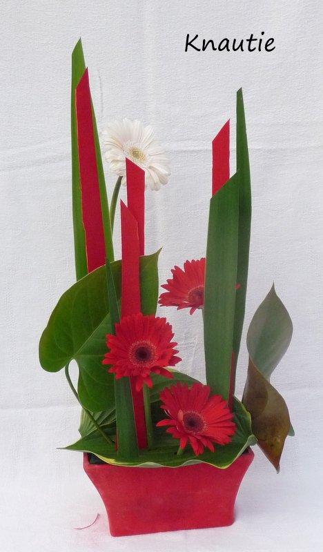 En rouge et vert