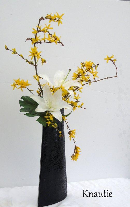 Bienvenue au printemps !!!!