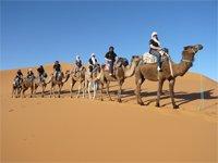 NOUVEL AN 2012 AU DESERT: 8 jours/7 nuits ....