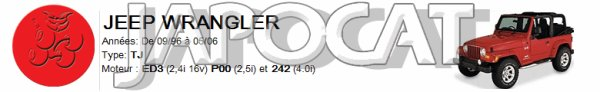 PARE-CHOC Avant JEEP WRANGLER TJ de 08/1996 à 04/2007