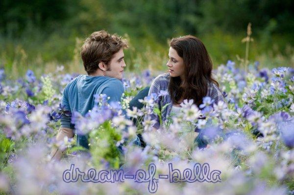 Le rêve de Bella.