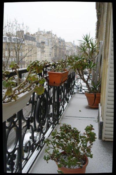 Ça y'est, la neige est arrivée.