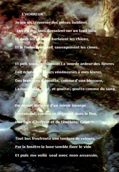"""""""DES LEPREUX... LISENT LES SIGNES FOUS QU'UN VOL D'OISEAUX DESSINENT"""""""