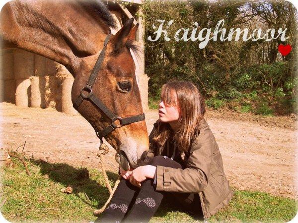 ⇨ Article 5  -  Pour parler à un cheval, il n'y a pas besoin de mots. C'est une étreinte charnelle qui alimente nos rêves. .