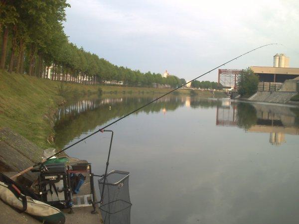 le temps change et le poissons aussi!!!!!!!!!!!!!!!!!!!!!!!!!!!!!!!!!!!!!!!