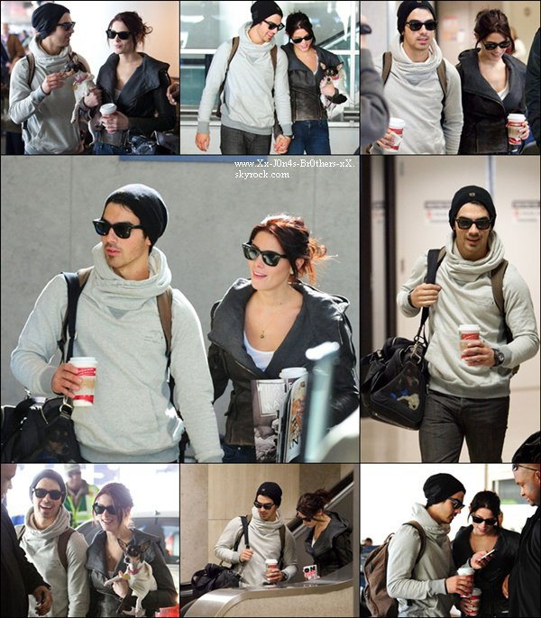 Le 21/11/2010 : Joe et Ashley à l'aéroport de LAX, L.A.  Le 22/11/2010 : Joe et Ashley faisant du shopping pour le nouveau chien de misss Greene.