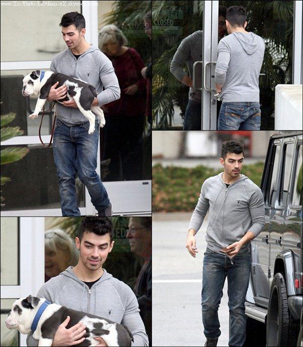 Le 02/01/2011 : Joseph et Winston chez le vétérinaire à L.A. Ne me demandez pas où sont Kévin et Nick j'en est aucune idée et j'aimerais comme vous voir leur jolie petite tête...