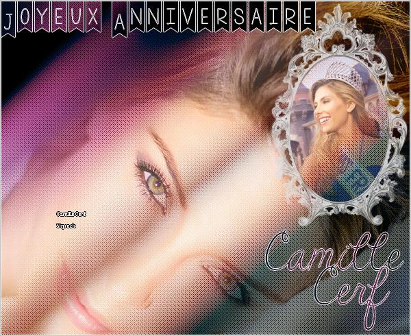 09/12/14 : Anniversaire Camille