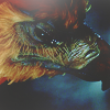 Harry Potter And The Chamber O / HARRY POTTER 2 - Fawkes is reborn (2002)