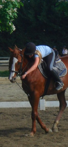 Ou l'amour des chevaux.