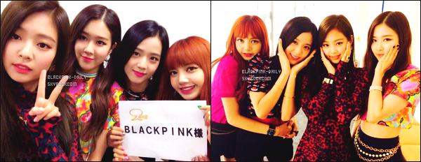 ----------------  • Des photos personnelles de BlackPink mis en ligne sur le compte YGEXStaff partager sur Instagram.   Aout 2017 -   Des photos de BlackPink pour leur debut au Japon, elles sont tellement belle. J'aime le petit haut coloré de la sublime Rose.  ----------------