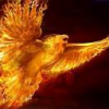 Phoenix-Theme