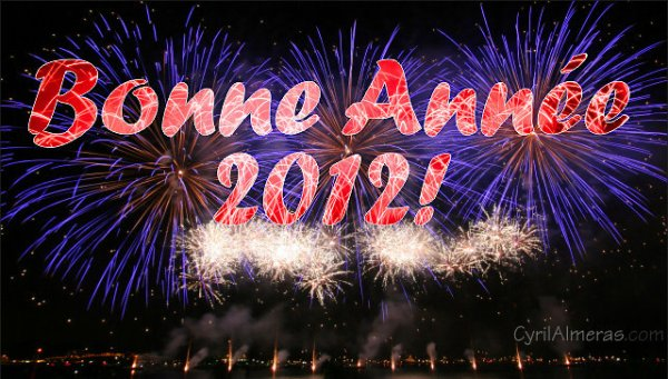 (l) :) JE VOUS SOUHAITE UNE BONNE ET HEUREUSE ANNEE 2012(l) :)