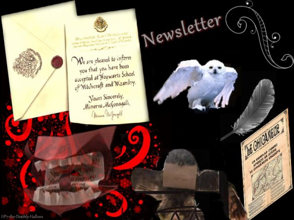 Newsletter + sommaire