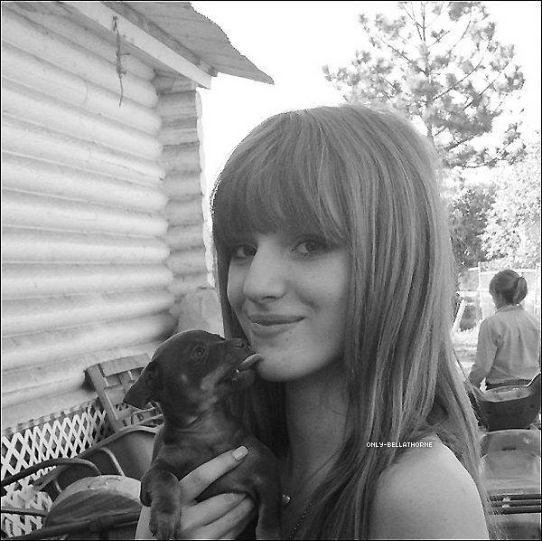 . Bella a postée des nouvelles photos sur son compte Twitter .
