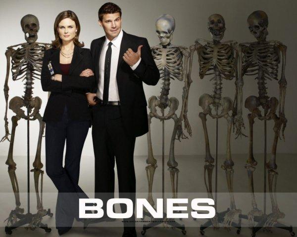 Bones :