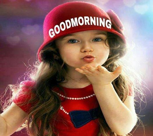 Bonjour tout le monde