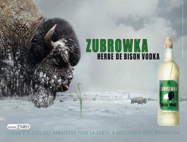 Zubrowka !