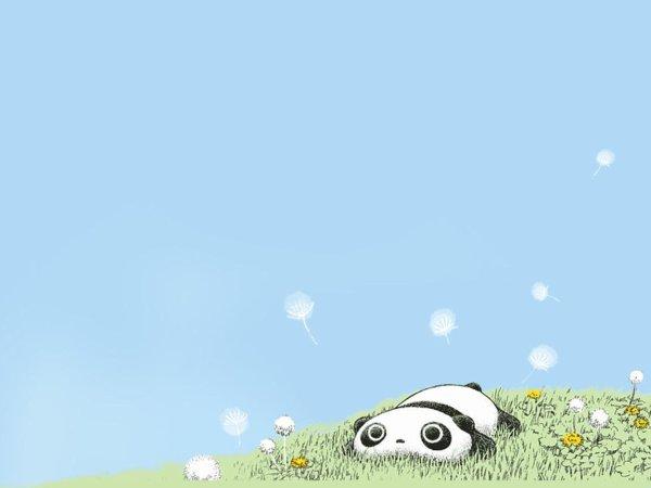 ♔ The Panda's Family  ♔