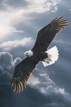 un chemin vers la liberté