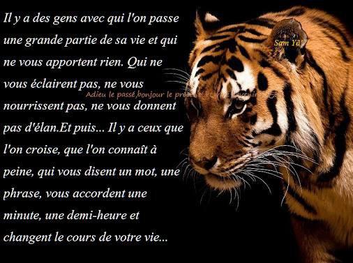 la vie!!!!!!!!!!