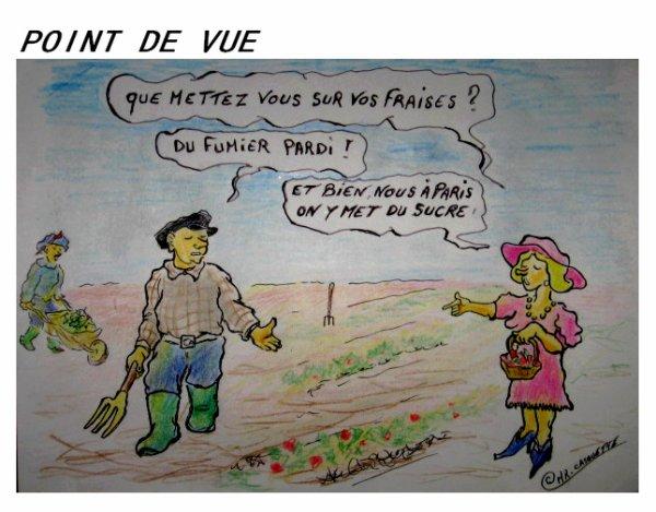 MR-CASQUETTE ...humour !