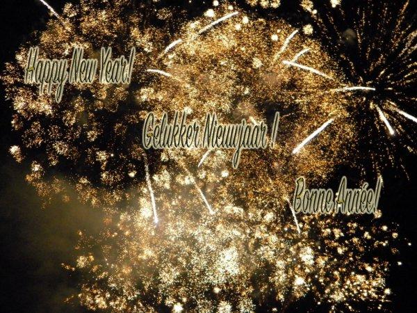 Bonne et heureuse année à tous!
