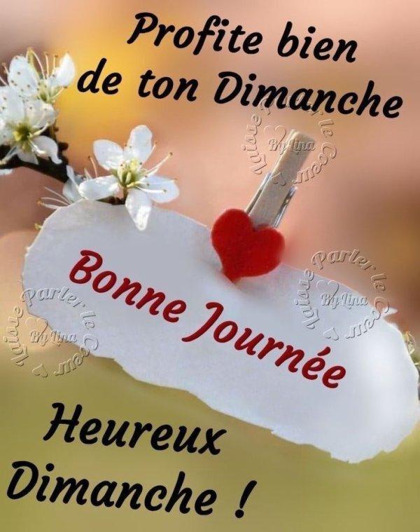 bonjour  bon dimanche mes amies et amis bisous