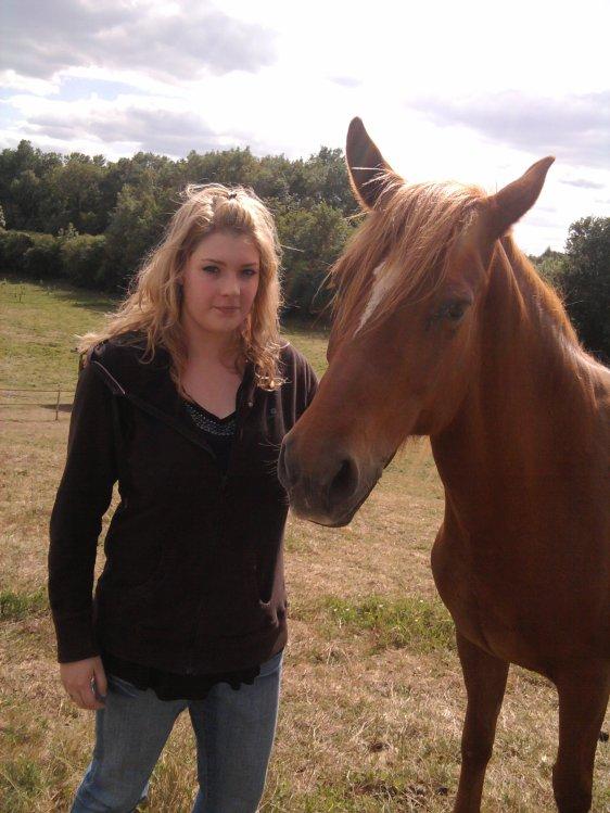 les chevaux & moi